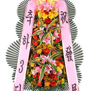 축하3단기본(20%할인상품)
