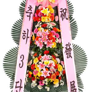 축하3단기본(30%할인상품)